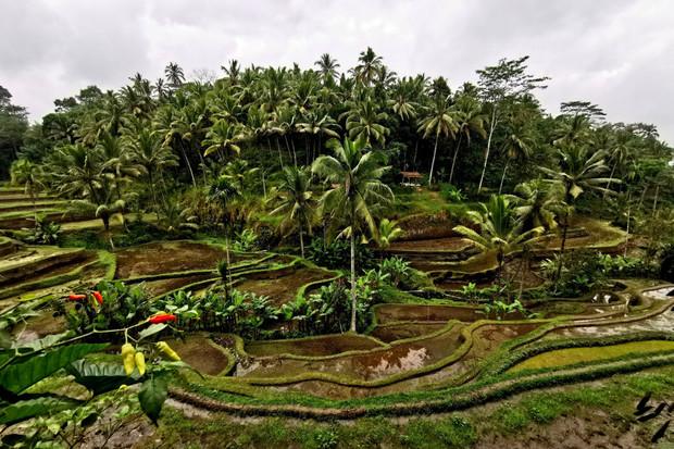 Objevte krásy Indonésie skrze objektivy fotoaparátu Huawei P30 Pro