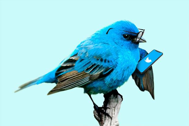 Twitter bude varovat před lajkováním dezinformací