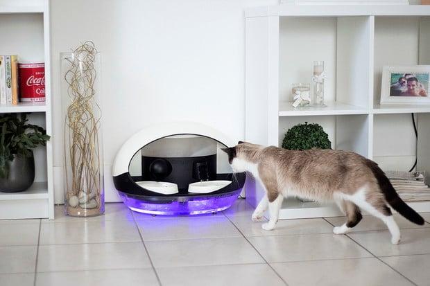 Catspad je inteligentní krmítko pro kočky. Ovládání přes Wi-Fi je samozřejmostí