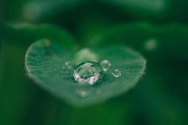 Dotyková obrazovka by mohla poznat, jestli je voda vhodná k pití