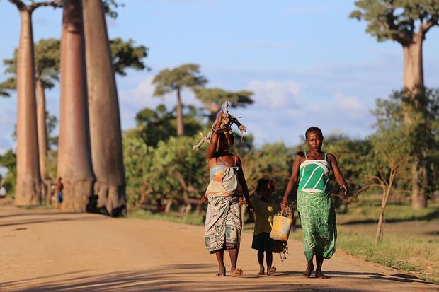 Klimatické změny dohnaly Madagaskar na pokraj hladomoru