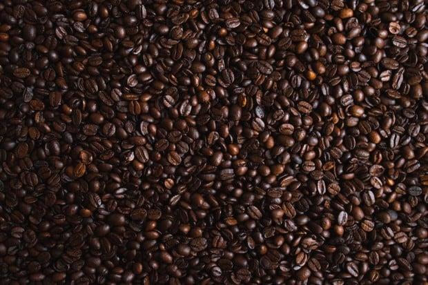 Nejenom maso, ale i kávu lze vyrobit v laboratoři. Pomůže to ekologii