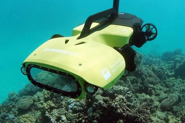 Podmořský LarvalBot zachraňuje korálové útesy způsobem, který byste nečekali