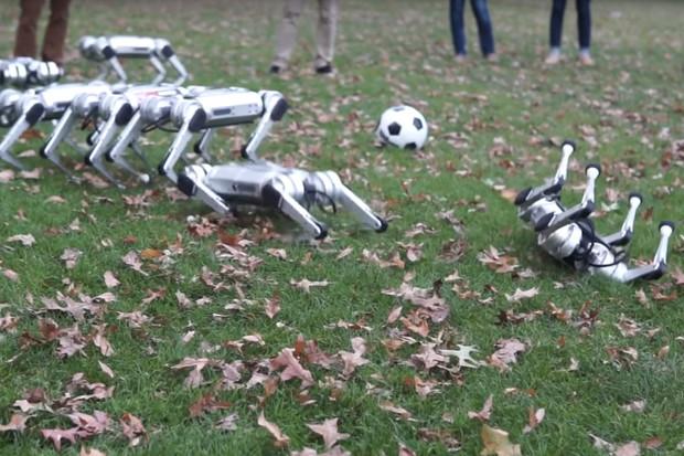 Podívejte se, jak roztomilí psí roboti řádí v parku