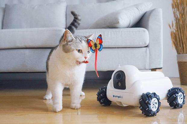 Robot Pumpkii zabaví vaše zvířecí mazlíčky, když zrovna nejste doma