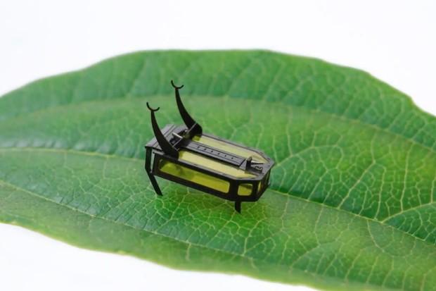 Malého robotického brouka pohání metanol