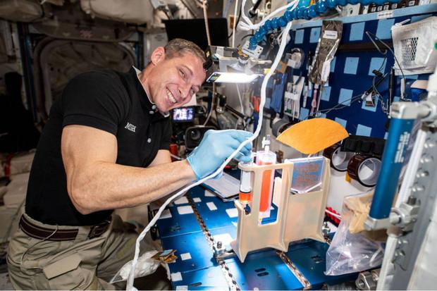 NASA zjistila, jak správně pěstovat rostliny ve vesmíru