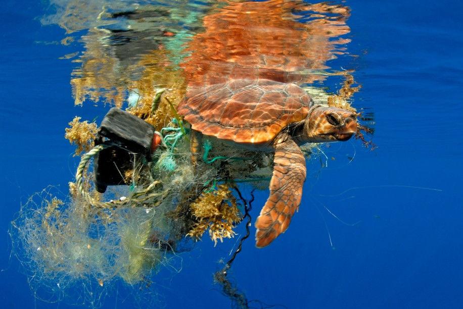 Siemens hledá cesty, jak vyčistit oceány od plastu